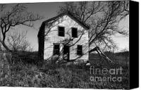 Old Houses Canvas Prints - Regeneration Canvas Print by Amanda Barcon