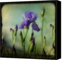 Flower Photograph Canvas Prints - Retro Iris Canvas Print by Gothicolors With Crows