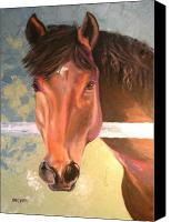 Large Format Horse Print Canvas Prints - Reverie Canvas Print by Susan A Becker