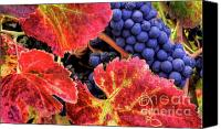 Blue Grapes Canvas Prints - Richness Canvas Print by Mars Lasar
