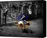 Bulls Photo Canvas Prints - Ride the Thunder Canvas Print by Amanda Horne