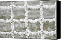 Grid Canvas Prints - Rime covered fence Canvas Print by Christine Till