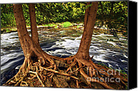 Roots Canvas Prints - River and trees Canvas Print by Elena Elisseeva