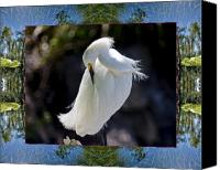 Spiritual. Geometric Canvas Prints - River Egret Canvas Print by Bell And Todd