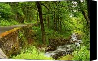 Wahkeena Creek Canvas Prints - Road less traveled Canvas Print by Idaho Scenic Images Linda Lantzy