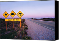 Kangaroo Canvas Prints - Road Signs On The Eyre Highway Near Eucla, Nullarbor National Park, South Australia Canvas Print by Peter Walton Photography