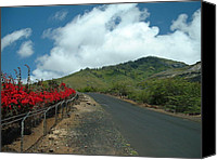 Ascension Island Canvas Prints - Road to the Gods Canvas Print by Erik Albright