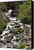 Mountain Stream Canvas Prints - Roadside Mountain Stream Canvas Print by Mike McGlothlen