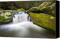 Gatlinburg Canvas Prints - Roaring Fork Great Smoky Mountains National Park - The Simple Pleasures Canvas Print by Dave Allen