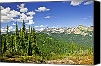 British Columbia Canvas Prints - Rocky mountain view from Mount Revelstoke Canvas Print by Elena Elisseeva