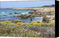 Mild Canvas Prints - Rocky Surf with Wildflowers Canvas Print by Carol Groenen