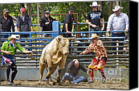 Bulls Photo Canvas Prints - Rodeo Clowns to the Rescue Canvas Print by Sean Griffin
