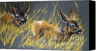 Forest Pastels Canvas Prints - Roe Deer Canvas Print by Angel  Tarantella