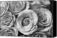 James Insogna Canvas Prints - Rose Bouquet in Black and White Canvas Print by James Bo Insogna