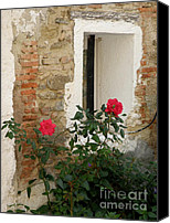 Window And Doors Canvas Prints - Roses and Antiquity  Canvas Print by Lainie Wrightson