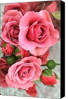 Lovely Looking Flower Canvas Prints - Roses And Buds Canvas Print by Debra     Vatalaro