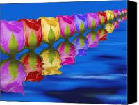 Row Canvas Prints - Roses Floating Canvas Print by Tom Mc Nemar