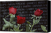 War Monuments And Shrines Canvas Prints - Roses Glow Against The Black Granite Canvas Print by Karen Kasmauski