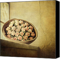 Tuscany Canvas Prints - Roses On Window Canvas Print by Marco Misuri