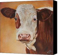 Cow Barn Canvas Prints - Rosie Canvas Print by Laura Carey