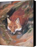 Fox Pastels Canvas Prints - Rudy adult Canvas Print by Marika Evanson