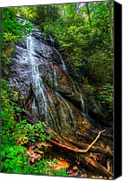Verticle Canvas Prints - Rufus Morgan Falls Canvas Print by Debra and Dave Vanderlaan
