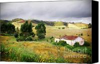 Autumn Foliage Canvas Prints - Ruin in Countryside Canvas Print by Carlos Caetano
