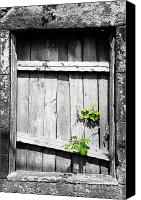 Selective Color Canvas Prints - Ruins Canvas Print by Gaspar Avila
