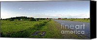 Raf Canvas Prints - Runway Light with Cows Canvas Print by Jan Faul