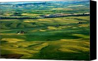Rural Scenes Canvas Prints - Rural Tapestry Canvas Print by Mike  Dawson