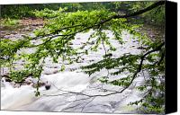 Rushing Mountain Stream Canvas Prints - Rushing River Canvas Print by Thomas R Fletcher