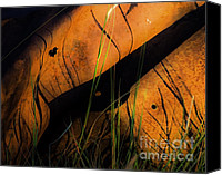 Arne J Hansen Canvas Prints - Rusted Canvas Print by Arne Hansen