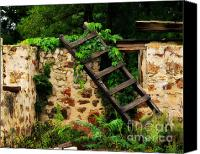 Ruins Canvas Prints - Rustic Ladder Canvas Print by Perry Webster