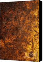 Heavy Texture Canvas Prints - Rusty Background Canvas Print by Carlos Caetano