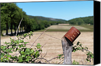 Wooden Post Canvas Prints - Rusty Tin Can Laid On Fence And Fields Canvas Print by Gil Guelfucci