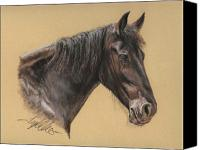 Equestrian Pastels Canvas Prints - Rutger Canvas Print by Terry Kirkland Cook