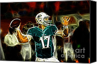 Miami Dolphins Canvas Prints - Ryan Tannehill - Miami Dolphin Quarterback Canvas Print by Paul Ward