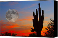 Sunset Prints Special Promotions - Saguaro Full Moon Sunset Canvas Print by James Bo Insogna