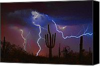 Landscapes Tapestries Textiles Special Promotions - Saguaro Lightning Nature Fine Art Photograph Canvas Print by James Bo Insogna