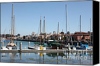 Yachts Canvas Prints - Sail Boats At The San Francisco Marina - 5D18172 Canvas Print by Wingsdomain Art and Photography
