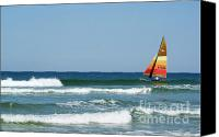 Buffet Canvas Prints - Sail in the Sun Canvas Print by Jack Norton