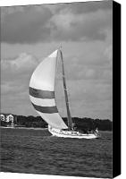 White Seagull Canvas Prints - Sail Power Canvas Print by Dustin K Ryan