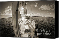 Beneteau Sailboat Canvas Prints - Sailboat Sailing Charleston South Carolina Canvas Print by Dustin K Ryan