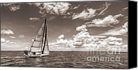 Beneteau Sailboat Canvas Prints - Sailboat Sailing on the Charleston Harbor Sepia Beneteau 40.7 Canvas Print by Dustin K Ryan