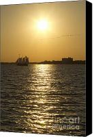 Birds Canvas Prints - Sailboat Sunset on the Charleston Harbor Canvas Print by Dustin K Ryan