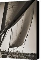 Beneteau Sailboat Canvas Prints - Sailing Beneteau 49 Sloop Canvas Print by Dustin K Ryan