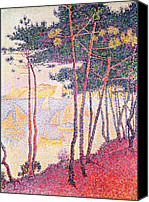 Signac Canvas Prints - Sailing Boats and Pine Trees Canvas Print by Paul Signac