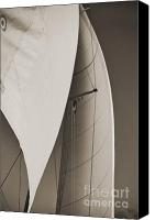 Black And White Yacht Canvas Prints - Sails Canvas Print by Dustin K Ryan