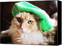 Kitten Greeting Card Digital Art Canvas Prints - Saint Patricks Day Canvas Print by Denise Oldridge