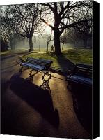 Walked Canvas Prints - Saint Stephens Green, Dublin, Co Canvas Print by The Irish Image Collection